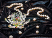 Loto di Cristal con la collana della perla Fotografia Stock