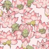 Loto di fioritura senza cuciture illustrazione vettoriale