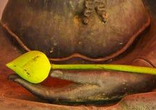 Loto en las manos de Buddha Foto de archivo