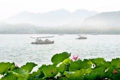 Loto in lago ad ovest, Hangzhou Fotografia Stock