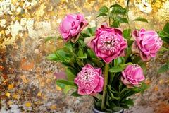 Loto rosado en un florero a adorar Fotografía de archivo libre de regalías