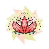 Loto sagrado Ejemplo del vector de la flor floración Fotos de archivo