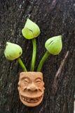 Loto verde en florero de cerámica Imagen de archivo