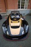 Lotos Bawi się samochód fotografia royalty free