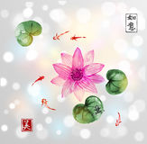 Lotos flowers and little fishes in pond Royalty Free Stock Image