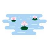 Lotos rosados en el agua azul Imagen de archivo