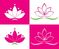 Lotos. Vector illustration of a lotus EPS 10 Royalty Free Stock Images