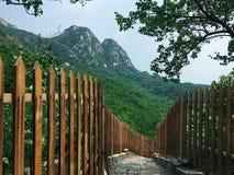 Lotosowa góra Obrazy Stock