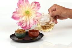 Lotosowa stamen herbata Zdjęcie Royalty Free