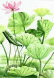 Lotosowego kwiatu akwareli obraz ilustracja wektor