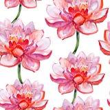 Lotosowego kwiatu wzór. akwarela. Fotografia Royalty Free