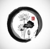Lotosowi kwiaty w czarnym enso zen okręgu Zdjęcia Stock