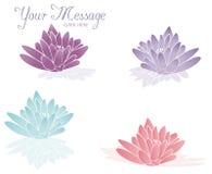 lotosowy zdrój Fotografia Royalty Free