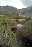 Lotru river springs Stock Photo