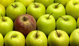 Lots of apples Stock Photography