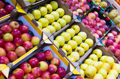 Lots apples Royalty Free Stock Images