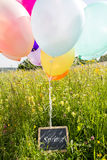 Lots of ballons on the meadow and a board with the word spring Royalty Free Stock Photography