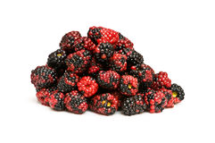 Lots of berries isolated. On the white background Stock Images