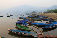 Lots of boats on phewa lake Royalty Free Stock Image