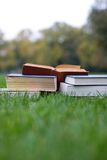Lots of books on the grass Royalty Free Stock Image