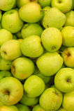 Lots of bright green apples Royalty Free Stock Photo