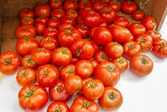 Lots of bright red tomatoes spilling out of a wooden crate. Bright red tomatoes spilling out of a wooden crate at the farmers market stock photos