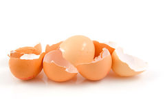 Lots of broken egg shells Stock Photo