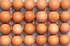 Lots of brown fresh chicken eggs. Top view.  stock photo