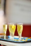 Lots of champagne glasses Royalty Free Stock Photography