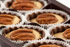 Lots of chocolate with pecan Royalty Free Stock Photo