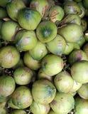 Lots of Coconuts. At market Stock Photos