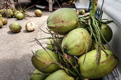 A lots of coconuts on the street for sell Royalty Free Stock Images
