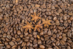 Lots of coffee beans. And four anise stars. Background. Shallow Royalty Free Stock Images