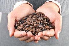 Lots of coffee beans in the hand Stock Images