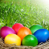 Lots of colorful easter eggs Stock Photo