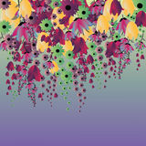 Lots of colorful flowers Stock Images