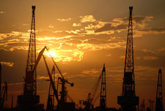 Lots of construction cranes at sunset sky background Stock Photos