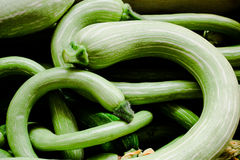 Lots of courgette. Some bended fresh green courgettes Royalty Free Stock Image
