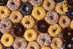 Lots of donuts. From above - chocolate glazed, sprinkles, coconut, chocolate, sugar Royalty Free Stock Photos
