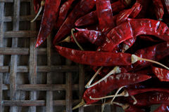 Lots of dried chilli . Lots of dried chilli on threshing basket Royalty Free Stock Photos