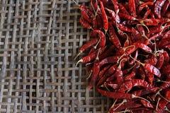 Lots of dried chilli . Lots of dried chilli on threshing basket Stock Image