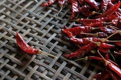 Lots of dried chilli. Lots of dried chilli on threshing basket Stock Image