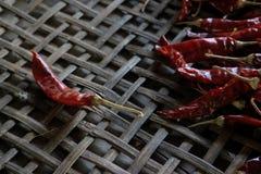 Lots of dried chilli. Lots of dried chilli on threshing basket Royalty Free Stock Photo