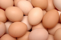 Lots of eggs. It is lots of brown eggs Stock Images