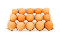 Lots of eggs in the carton isolated. On white Stock Image