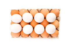 Lots of eggs in the carton isolated Stock Photography