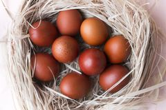 Lots, eggs, Easter, brown, Easter eggs, nest, beige background. Top view stock image