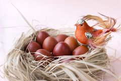 Lots, eggs, Easter, brown, Easter eggs, nest, bird. Beige background stock images
