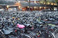Lots Fahrräder stockfoto