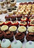 Lots of fancy cupcakes in rows Stock Images